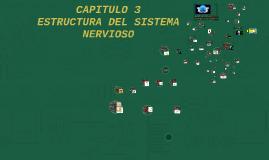 CAPITULO 3 Estructura del Sistema Nervioso