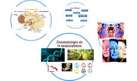 Fisiopatologia de la esquizofrenia
