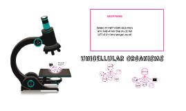 Unicellular Organisms:
