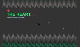 The heart.