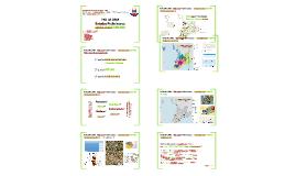 UR0025 - PAU DA LIMA Estudos Preliminares: Mobilidade Urbana