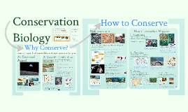 AP Bio- 9.5: Conservation Biology