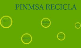 PROGRAMA PINMSA RECICLA