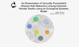 An Examination of Sexually Transmitted Disease Risk Factors