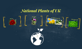 National Plants of UK