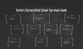Katie's Declassified School Survival Guide