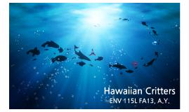 Hawaiian Critters