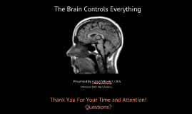 The Brain Controls Everything (People Inc 4.8.16)