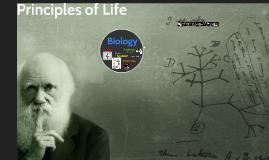 AP Biology 4 Big Ideas