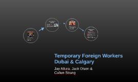 Temporary Foreign Workers Dubai & Calgary