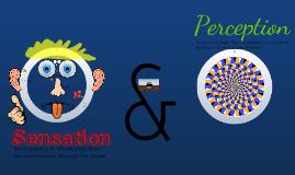 Copy of Psychology unit 3: Sensation and Perception