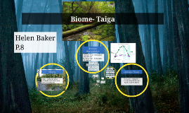 Biomes- Taiga