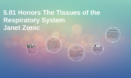 5.01 Honors The Tissues of the Respiratory System