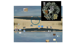 Digital Shells and Seashore Project