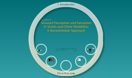Situated Perception and Sensationin Vision and Other Modalities - A Sensorimotor Approach