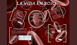 Copy of GLOBULOS ROJOS