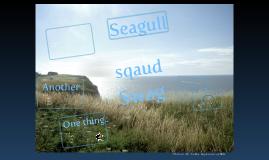 seagull sqaud