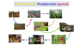 Estructura de Producción Agraria