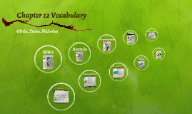 Chapter 12 Vocabulary
