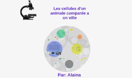Les Cellules d'un animales comparée a un ville