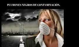pulmones negros de contaminacion