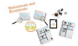 Endocytosis/Exocytosis