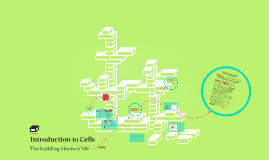 Introduction to a Cell