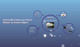 Stickstoffkreislauf von Edwin Hübner & Ramtin Biglari