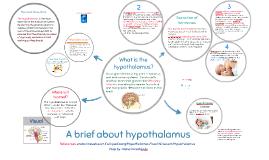 A brief about hypothalamus