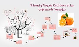 Internet y Negocio Electrónico en las Empresas de Naranjas
