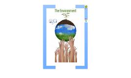 Environment & Population