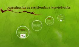 reproduccion en vertebrados e invertebrados