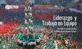 Programa: LIDERAZGO Y TRABAJO EN EQUIPO 2017