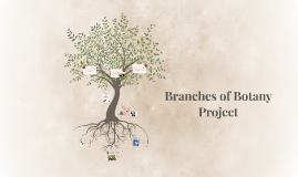 Copy of Branches of Botany Proejct
