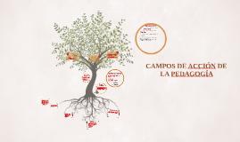Campos de acción de la pedagogía