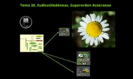 2016. Eudicotiledóneas. Asteranae (T35) para Ambientales.