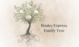 Booley Express