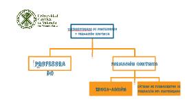 Presentación IDU