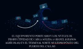 EL EQUIPAMIENTO PORTUARIO Y LOS NIVELES DE PRODUCTIVIDAD DE