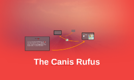 The Canis Rufus