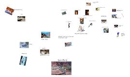 Downriver Novel Plot Map