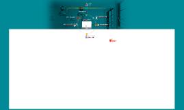 Website: Accounts Payable