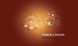 Copy of PMBOK COSTOS