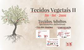 Tecidos Vegetais II
