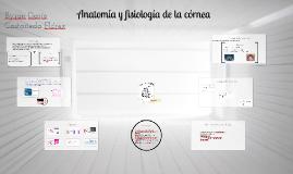 Copy of Anatomía y fisiología de la córnea