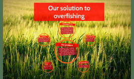 Solution To Overfishing