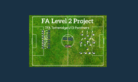 Copy of FA Level 2 Project