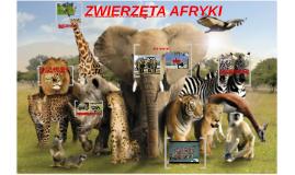 Copy of Zwierzęta afryki