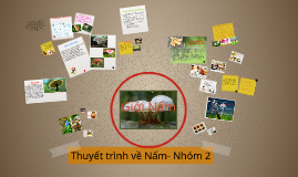 Copy of Ngành Nấm