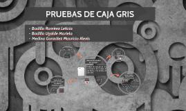 PRUEBAS DE CAJA GRIS
